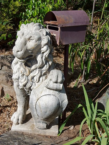 Cranky Lion By Letter Box