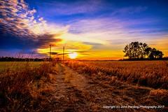 Line's End (T i s d a l e) Tags: tisdale linesend sunrise dawn farm field fall december 2016 easternnc
