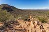 IMG_6265-Bearbeitet (dominikborsch) Tags: tucson arizona usa saguaros saguaronationalpark nature nationpark landscape landschaft desert wüste kaktus cactus