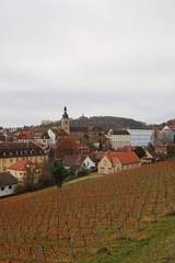IMG_8147 (maro310) Tags: 70d architecture bamberg bavaria bayern canon city deutschland germany outdoor sightseeing urban winter hillside grape grapes vinyard