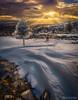 Nevada en la Sierra de los Filabres (Almería) (dleiva) Tags: sunset winter sun snow dawn montain invierno dleiva domingo leiva spain tree españa andalucia almeria nieve almería calar alto sierra de los filabres andalusia