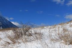les Follatères (bulbocode909) Tags: valais suisse fully branson follatères montagnes nature hiver neige nuages bleu