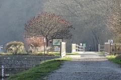 le joggeur (mchub) Tags: joggeur hiver lamayenne hx400v soleil lumière pollution