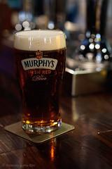 Una pinta de Murphy's / A Pint of Murphy's. (Recesvintus) Tags: cerveza beer bier bière birra pint pinta murphys irishred irishpub bokeh recesvintus albacete spain commlite