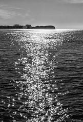 Reflejos de mi alma. (Pepa Morente ( 1.555.000 de VISITAS )) Tags: salobreña peñón agua blancoynegro reflejos sol día vertical