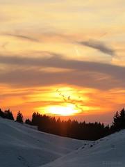 Extravaganza (nathaliedunaigre) Tags: sunset coucherdesoleil extravagance extravaganza nature naturel natural mountains montagnes sapins neige snow amazing stunning étonnant semnoz hautesavoie france hiver winter clouds