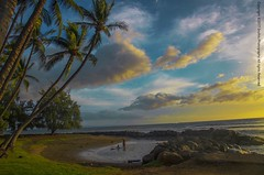 In all things of nature... (Sruthis Photography) Tags: in all things nature there is something marvelous maui hawaii travel sunset coconut sruthis photography d7000 nikon lauiniupokobeachpark lauiniupoko beach park
