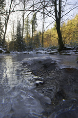 Icy Canyon Monbachtal (Psychograph) Tags: badliebenzell blackforest calw monbachtal canyon cold frozen hdr ice light nature rivulet shadow stones trees water winter