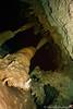 Stalactites in Cenotes Dos Ojos (Deve82) Tags: americacentrale cenotedosojos centralamerica messico mexico tulum cenote cenotes immersione landscape paesaggio scubadiving stalactite stalactites stalagmite stalagmites stalagmiti stalattite stalattiti subacquea underwater