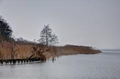 Zuidlaardermeer | the Netherlands (frata60) Tags: nikon nikkor d300s landscape landschap netherlands nederland zuidlaardermeer winter cold koude kou