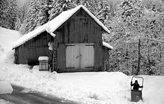 Valle di Braies (Mattia Camellini) Tags: yashicaelectro35gt braies vintagecamera yashinon1745mm rangefinder mattiacamellini winter neve snow montain montagna dolomiti unescoworldheritage ilforddelta100professional rodinal sudtirol trentinoaltoadige