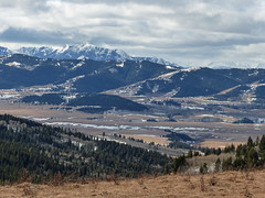 A view from the Porcupine Hills (annkelliott) Tags: alberta canada swofcalgary swofnanton nature landscape scenery viewfromporcupinehills spectacular valley foothills rockymountains mountain ridge range tree trees forest grassland field snow cloud clouds outdoor winter 20february2017 fz200 fz2004 lumix panasonic annkelliott anneelliott ©anneelliott2017 ©allrightsreserved