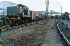 1983-11-30 D9555 and D9500 (right)  Lynemouth Colliery (delticalco) Tags: br rail trains railways britishrail ncb industrialrailway class14 exbr industrialloco