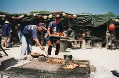 strandloper03 (fjordaan) Tags: southafrica 1999 scanned sa langebaan weskus strandloper