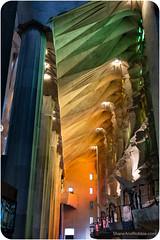 20151001(Canon EOS 6D)-00080 (ShaneAndRobbie) Tags: barcelona travel church spain europe modernism catalonia gaudi sagradafamilia favourite