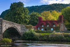 Top Tea Rooms (Paul Sivyer) Tags: conwyvalley llanrwst paulsivyer wildwalescom