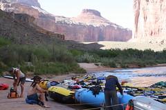 Grand Canyon 2015 601