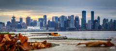 Vancouver (Daniel's Clicks) Tags: autumn canada fall leaves vancouver cityscape bc vancitybuzz