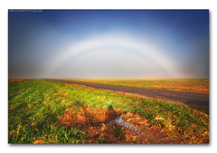 Intense Morning Fogbow/Dense Fog (StormLoverSwin93 | Into the Storm) Tags: blue autumn light sky cloud sun fall weather fog landscape photography illinois refraction atmosphericoptics fogbow canoneos60d