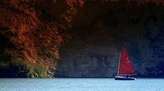 141 (EOS1DsIII) Tags: blue red rot germany deutschland boat wasser sailing frankfurt blau segelboot eos1dsiii