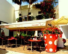 Maceta talla XXL (camus agp) Tags: espaa flores restaurante malaga lunares tipico rojos bougainvilleas geranios elpimpi lajuderia