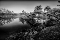 Under the bridge. (GComS) Tags: bridge white mist lake black fog lac pont brouillard