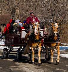 20150131_123916 - 0025 - Winter Days 2015 - Horse-drawn Sleigh Ride - [Portfolio Export] (Buckeye Photography) Tags: winter ohio horse fuji carriage unitedstates days fujifilm portfolio sleigh vermilion metroparks xe2