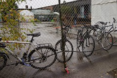 DSC02211 (jerome_Munich) Tags: munich mnchen asylum seeker asylumseeker asylanten