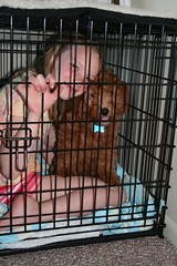yay-a-sleep-over--lola-is-one-of-lucy-and-chewys-girls-_4688069240_o