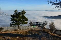 Naturpark Hohe Wand (anuwintschalek) Tags: nikond7000 d7k 18140vr austria niederösterreich hohewand naturparkhohewand naturpark fog nebel hochnebel udu skywalk skywalkhohewand talv winter december 2016 walter kalle