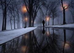 twilight walk (marianna_a.) Tags: p1350093 fog walk night day landscape urban man silhouette walking mariannaarmata montreal reflection trees path