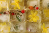 Cubist flowers (marionmcmurdo) Tags: icecubes flowers abstract