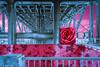 Portland, Oregon Bridge Series 4: Morrison Bridge in the City of Roses (Linda Sue Kocsis) Tags: bridge portland oregon duotone duo tone rose pink blue flower cloud surreal surrealism surrealistic vintage antique photo photograph collage dark color colorful noir layered layer photoshop lightroom adobe morrison willamette