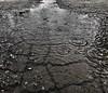 003:365 Rain Day! (Camera Eye Photography) Tags: 365the2017edition 3652017 day3365 3jan17 iphone7plus rain whitby canada puddle ashphalt wet