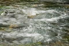 The_Boils_1/8sec (McConnell Springs) Tags: mcconnellspringspark lexingtonky spring theboils artesianspring water