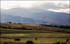 La nature est précieuse !!! (chan.gielen) Tags: castres france tarn sud paysage montagne
