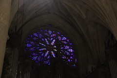 IMG_8291 (comtrag) Tags: newyorkcity stpatrickscathedral saintpatrickscathedral church christmas