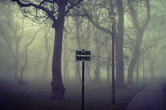 The Meadows (Tamas Katai) Tags: edinburgh scotland winter meadows fog mist haar morning light moody trees uk city park urban
