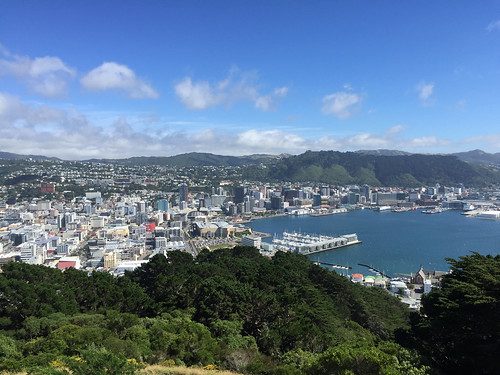 Central Wellington From Mt. Victoria