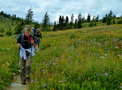 7-086 (Gnarlene) Tags: hiking banff healypass monarchramparts