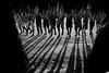 Asurini do Xingu (guiraud_serge) Tags: brazil portrait brasil amazon indian tribe ethnic indien matogrosso indio labret brésil tribu amazonie amazone forêttropicale ethnie kayapo kuikuro metuktire gorotire plateaulabial hautxingu parcduxingu sergeguiraud artducorps ornementcorporel asuriniduxingu