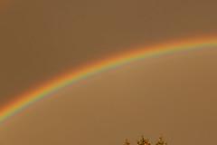 IMG_1309 (GreenKaktus) Tags: rainbow regenbogen 2015 phänomen