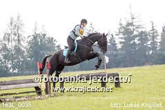 163L_0035 (Lukas Krajicek) Tags: military czechrepublic cz kon koně vysočina vysoina southbohemianregion blažejov dvoreček všestrannost dvoreek
