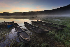 Misty morning at Tamblingan Lake (Pandu Adnyana Photography Tour) Tags: travel bali lake indonesia boat tour guide tamblingan balitravelphotography baliphotographytour baliphotographyguide balilandscapephotography