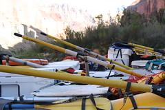 Grand Canyon 2015 605