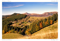 Couleurs d'automne (BerColly) Tags: autumn trees france automne google flickr foliage arbres auvergne sancy puydedome feuillage bercolly