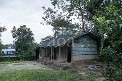 H503_2455 (bandashing) Tags: england house manchester mud hut sylhet bangladesh bungalow socialdocumentary aoa bandashing akhtarowaisahmed