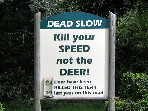 GOC Woburn 007: Kill your speed, not the deer!