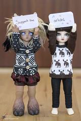 #ProBJDArtists 2015 (tjassi) Tags: ball asian toys doll dolls tan feather deer kanon bjd superdollfie volks soom abjd gem isi afi teenie jointed legit yosd tannned proartist antirecast probjdartists
