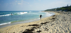 Trigg- surf
